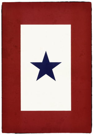blue-star-service-flag